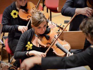 Viola- Valentina Rebaudengo