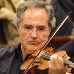 Violino- Luca Falasca