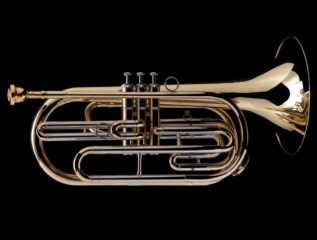 Trombone- Andrea Maccagnan