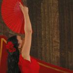 Flamenco- Rita Marchesini